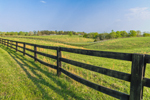 Rolling Green Hills, Fences, and Fields in Spring, Piedmont Region, Albemarle County, Village of Hatton, Scottsville, VA