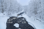 Millers River during Snowstorm, Royalston, MA