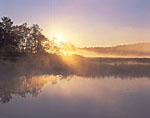 Sun Rising through Ground Fog at Northeast Creek, Fresh Meadow Marsh