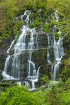 Whitmore Falls on Slatestone Brook, (aka Slatestone Brook Falls), Pioneer Valley, Sunderland, MA