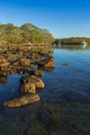 Early Morning Light Shines on Rocks in Cove on Goats Neck, Naushon Island at Hadley Harbor, Elizabeth Islands, Town of Gosnold, MA