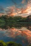 Cloud Reflections at Sunset on Small Pond off Lake Tashmoo, Martha's Vineyard, Tisbury, MA