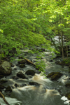 East Branch Tully River in Spring, Athol and Orange, MA
