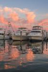Sport Fishing Fleet at Sunset, Montauk Harbor at Montauk Yacht Club, Star Island, Long Island, Village of Montauk, East Hampton, NY