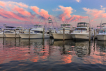 Sport Fishing Fleet at Sunset, Montauk Harbor at Montauk Yacht Club, Star Island, Long Island, Village of Montauk, East Hampton, NY