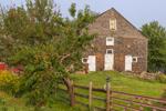 Old Cedar-shingled Barn and Peach Tree, Ashby, MA