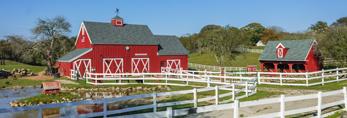 Red Barns and White Fences at Beacon Hollow Farm, Block Island, RI