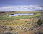 Pond, Marsh and Sagebrush in High Desert