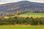 Rolling Hills, Forests, and Meadows in Fall, Salisbury, CT