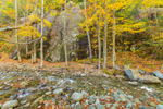 Rock Cliff along Beede Brook in Fall, High Peaks Scenic Byway, Adirondack Park, near Keene Valley, NY