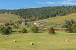 Rural Farmland on Ovoka Farm, Fauquier County, Paris, VA