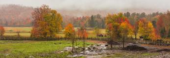 Rural Farmland on Foggy Morning in Fall, Adirondack Park, North Hudson, NY