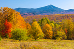 Whiteface Mountain and Fields in Fall, Adirondack Mountains, Adirondack Park, Harrietstown, NY
