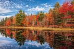 Brilliant Fall Foliage Reflecting in Hemingway Pond, Barre, MA