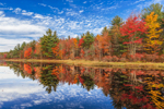 Brilliant Fall Foliage Reflecting in Hemingway Pond, Barre, MA