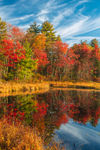 Brilliant Fall Foliage along Shoreline of Perkins Pond, Troy, NH