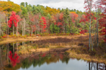 Marsh and Fall Foliage along East Branch Ware River, Rutland, MA
