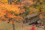 Covered Bridge over Willard Brook in Fall, Willard Brook State Forest, Ashby, MA