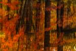 Fall Reflections in Lake Potanipo, Brookline, NH