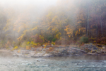 Early Morning Fog in Woodlands along Upper Delaware National Scenic and Recreational River in Fall, Upper Delaware Scenic Byway, Hamlet of Pond Eddy, Lumberland, NY