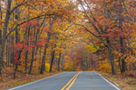 Fall Foliage along Country Road through Delaware State Forest near Promised Land State Park, Palmyra, PA