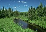 Boreas River in the Adirondacks
