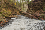 Glen Falls Trail and Kitchen Creek after Heavy Rainstorm, Ricketts Glen State Park, Luzerne County, near Benton, PA