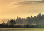 Morning Mist and Ground Fog, High Peaks Area