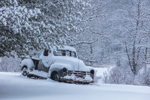 Antique Truck Covered with Snow, Fitzwilliam, NH