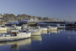 Lobster Boats in Perkins Cove after Fresh Snowfall, Ogunquit, ME