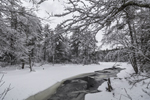 Beaver Brook in Winter after Fresh Snowfall, Royalston, MA