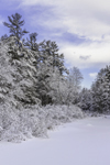 Frozen-over Priest Brook after Fresh Snowfall, Royalston, MA