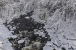Tarbell Brook in Winter after Fresh Snowfall, Winchendon, MA