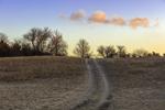 Road to the Sunrise Clouds, Martha's Vineyard, Edgartown, MA