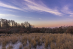 Sunrise over Wetlands at Jernegan Pond, Martha's Vineyard, Edgartown, MA