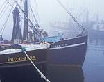 Commercial Fishing Boats in Heavy Fog, Cape Cod