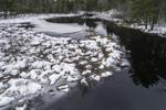 East Branch Ware River in Winter, Rutland, MA
