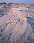 Windswept Sands on Beach at Little Talbot Island State Park, Little Talbot Island, FL