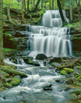 Waterfalls on Gunn Brook in Spring, Sunderland, MA
