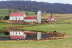 Barn and Silo at Historic Liberty Farm Reflecting in Pond, Fauquier County, Paris, VA