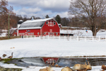 Big Red Barn on Bee-Sheep Farm after Fresh Snowfall, Stafford Springs, CT