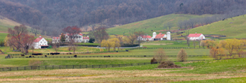 Ovoka Farm in Early Spring, Fauquier County, Paris, VA