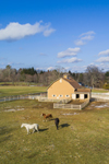 Aerial View of Horses in Pasture and Yellow Barn on Rural Farm, Belchertown, MA