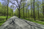 Country Road in Spring at Gillette Castle State Park, Lyme and East Haddam, CT