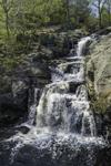 Chapman Falls on Eightmile River at Devil's Hopyard State Park, East Haddam, CT