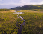 Agawam Brook and Wetlands with Monument Mountain in Background, Berkshire Mountains, Stockbridge, MA