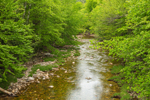 Evans Brook in Spring, White Mountain National Forest, Batchelders Grant, ME