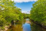 Ellis River in Spring, Rumford, ME