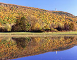 Fall Foliage on Talcott Mountain with Heublein Tower in Distance