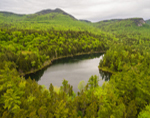 Falls Pond in Spring, Rocky Gorge Scenic Area, White Mountain National Forest, Albany, NH